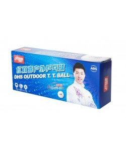 DHS D40+ Outdoor 10 Balls (seam)